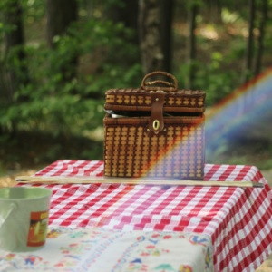 Finnbrit's 95th anniversary picnic